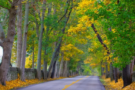 Tourisme : en images : couleurs d'automne sur le sud des Etats Unis ! 3965