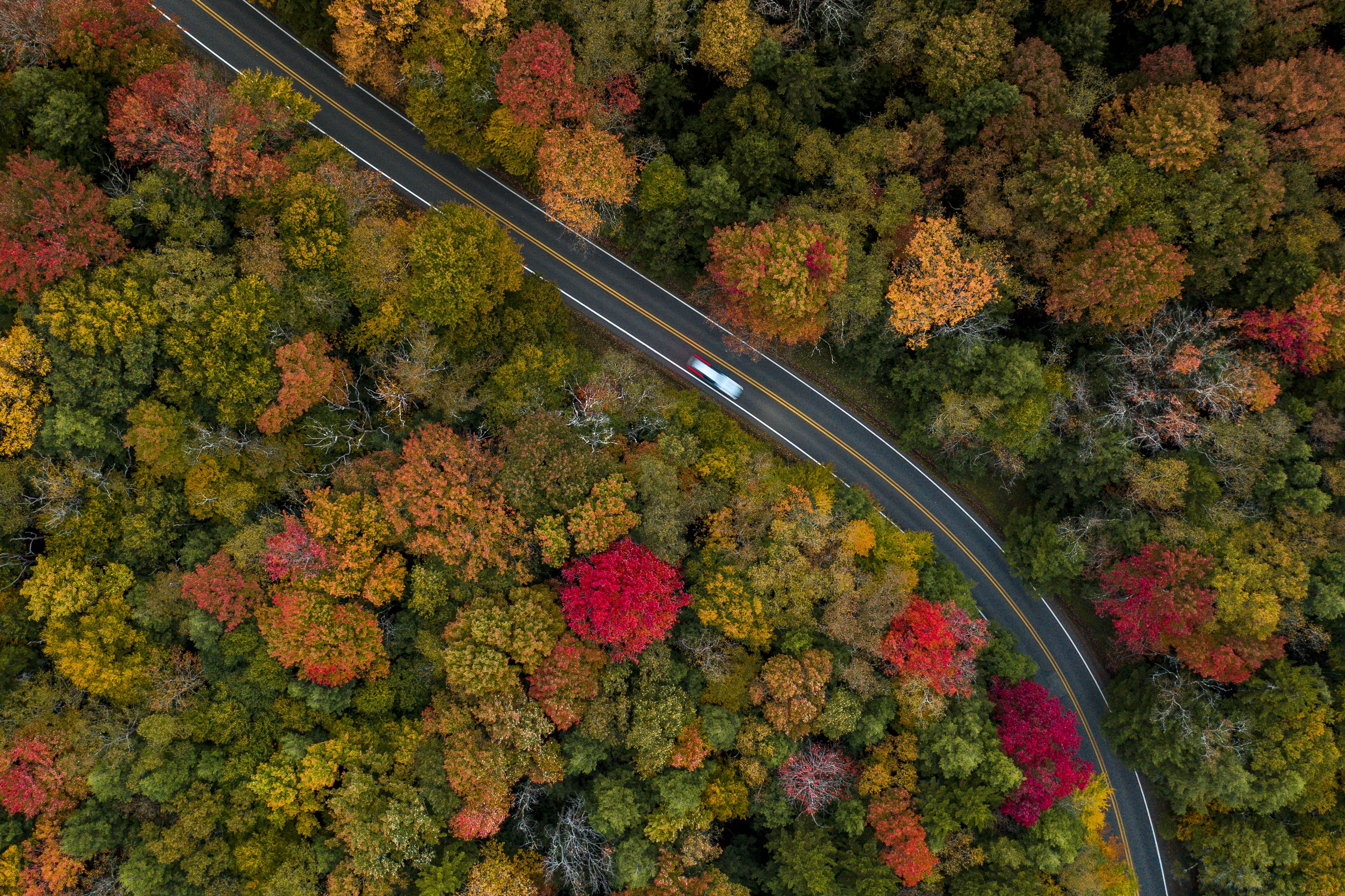 Tourisme : en images : couleurs d'automne sur le sud des Etats Unis ! 3968